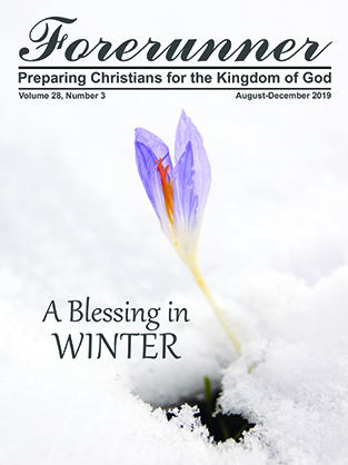 A Blessing in Winter